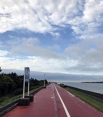 毎日早朝に歩く散歩道です。河口まで約2.5キロ。晴れの日には海が広がります。