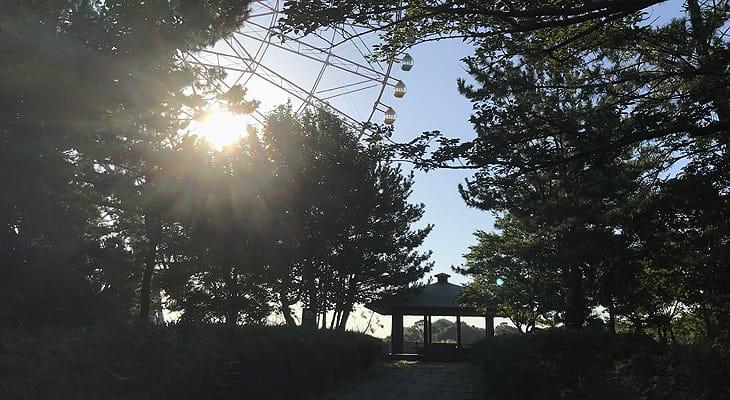 観覧車を左手に見ながら臨海公園内を進みます