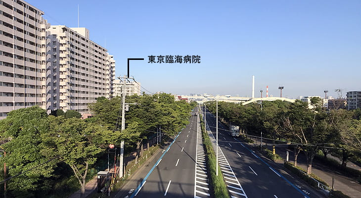 東京臨海病院があります。